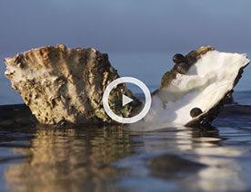 Underground channel - Film om geologi