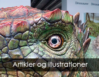 Artikler og illustrationer