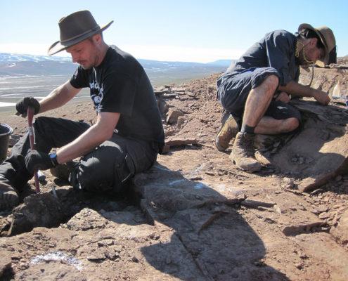 Geologiske undersøgelser på Grønland